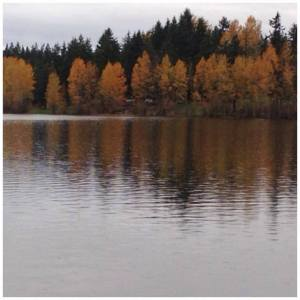 Lake Padden, in full fall foliage